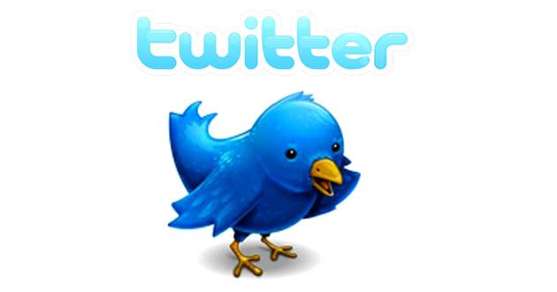 20130213205717-twitter.jpeg