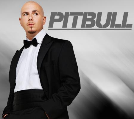 20131125111830-pitbull.jpg