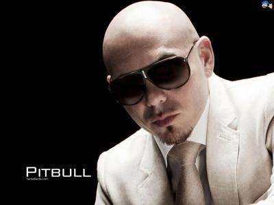20150420114230-pitbull-5a.jpg