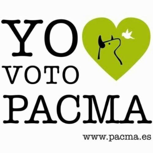 20151104173351-pacma.jpg